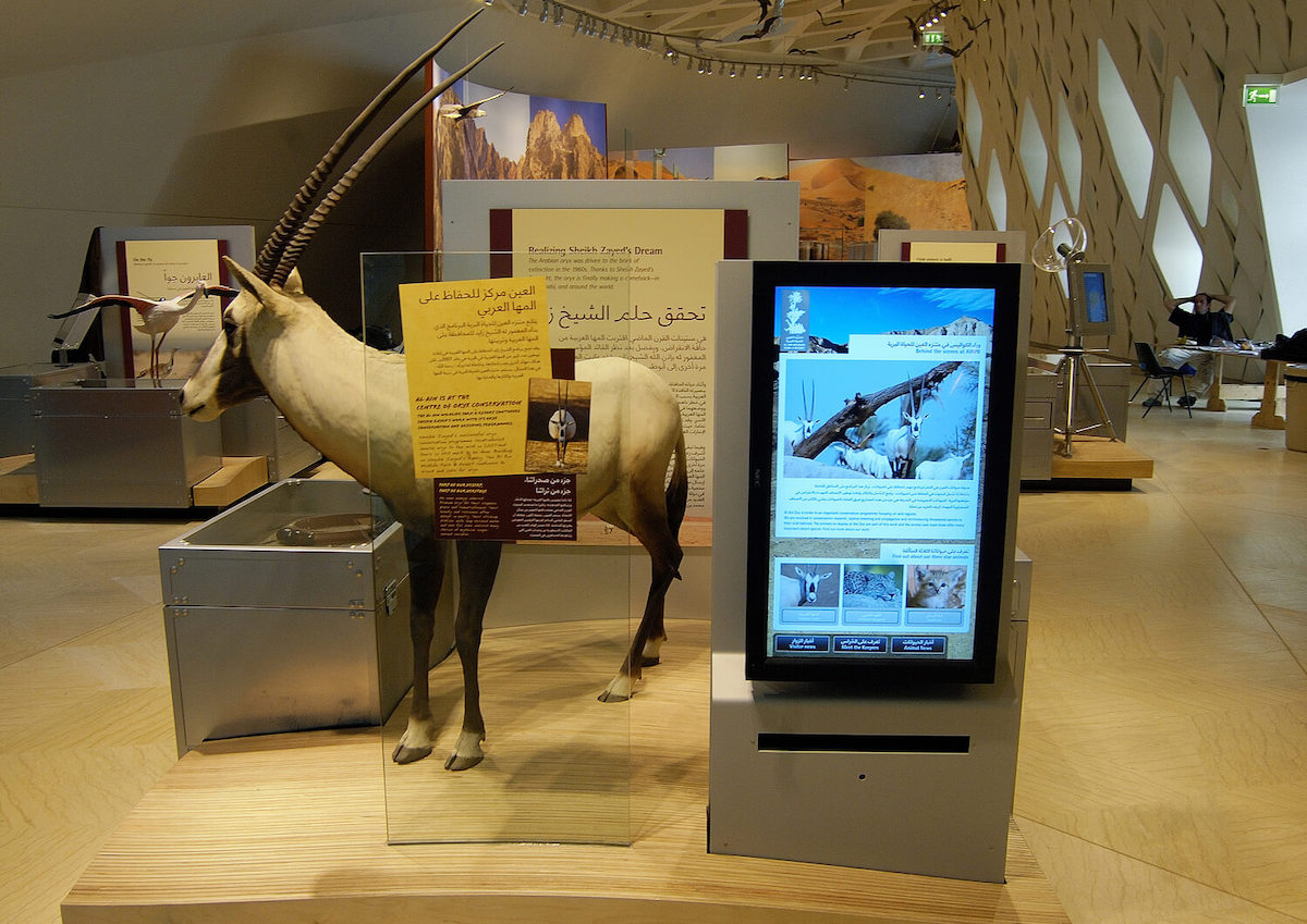 Interactive displays enable museums to continually update information as well as embrace customization depending on the audience.
